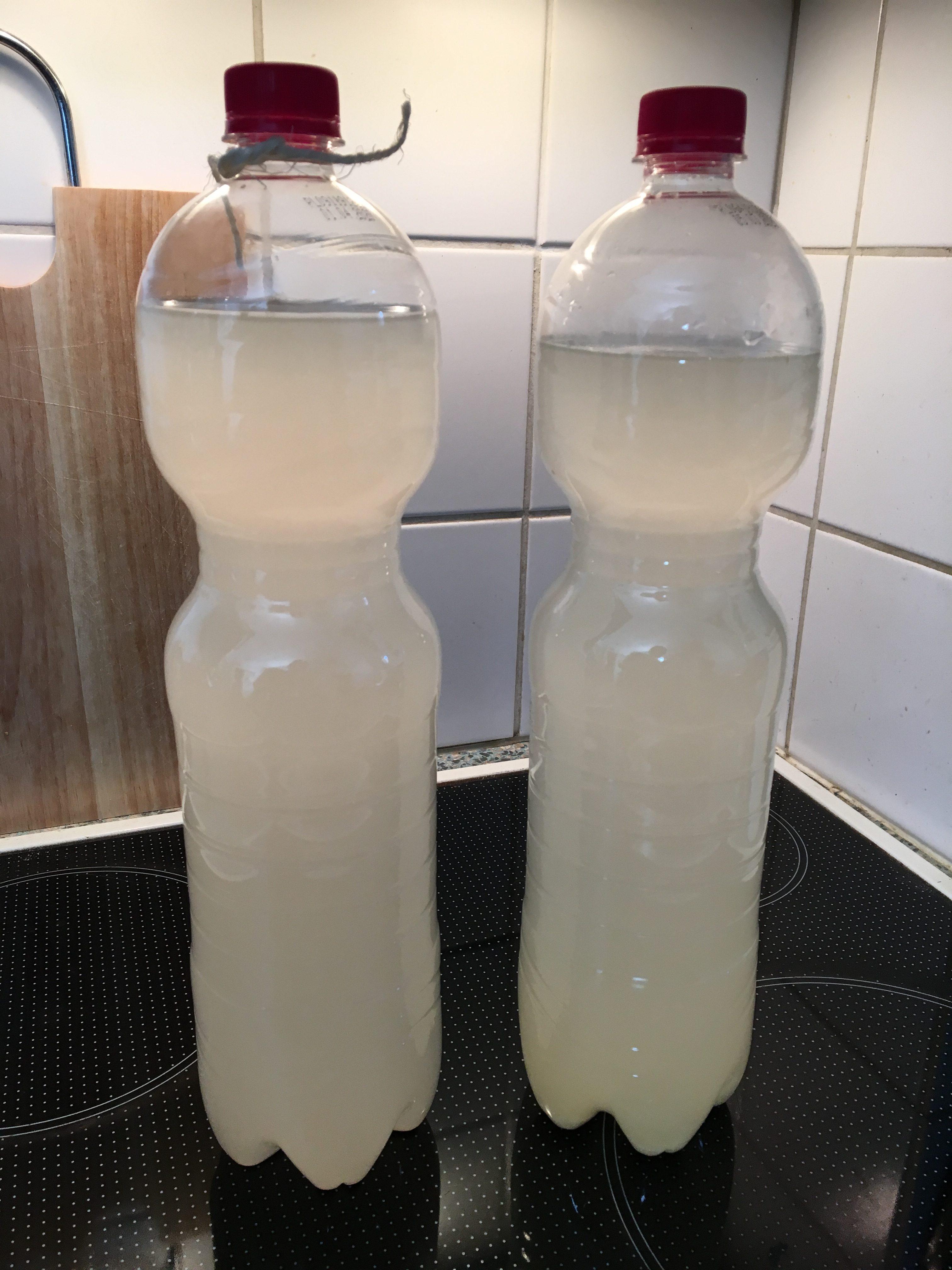 Und nochmal in ganzer Flasche: Rechts der erste Durchgang mit frischen Ingwerstücken, links der zweite mit gekochtem Ingwersirup